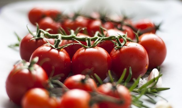jak nechat dozrát rajčata